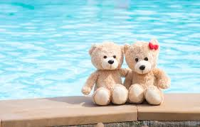 wallpaper sea beach love toy bear