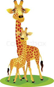 mother and baby giraffe stock vector