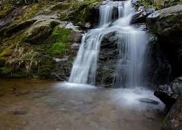 Dark Hollow Falls Travel Guidebook Must Visit Attractions In Shenandoah National Park Dark Hollow Falls Nearby Recommendation Trip Com