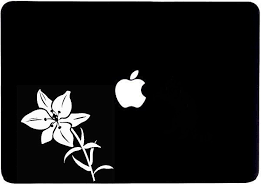 Lily Sticker Lily Decal Lily Window Sticker Lily Gift Lily Etsy In 2020 Window Stickers Computer Decal Laptop Stickers