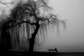 Você tem medo da solidão? | Instituto Verea