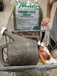 picture 7 2 menards cart