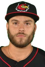 Daniel Palka Stats, Highlights, Bio   Rochester Red Wings Stats