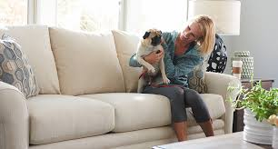 best furniture for pets leather or fabric