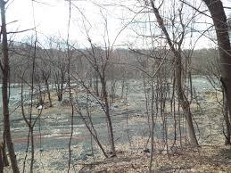 Old Ida Hill Cemetery (Defunct) in Troy, New York - Find A Grave ...