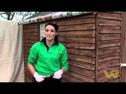 How To Paint A Timber Shed Youtube