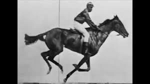 What is Motion - Eadweard Muybridge - YouTube