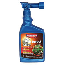 Bioadvanced 24 Hour Lawn Insect Killer 32 Oz Ready To Spray 724080a The Home Depot