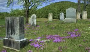 brown s funeral directors greensboro