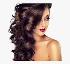 hair styles hair salon hd png