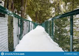 Empty Walkway Covered In Snow Stock Image Image Of Green Infrastructure 126086105