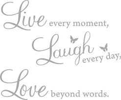 Amazon Com Blinggo 15 X 22 Silver Vinyl Decal Live Every Moment Laugh Every Day Love Beyond Words Wall Quote Home Kitchen
