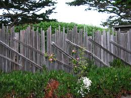 Maintaining The Essence Of Carmel Once Upon A Time Tales From Carmel By The Sea