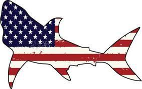 Wickedgoodz Die Cut American Flag Shark Vinyl Decal Ocean Bumper Sticker Perfect Beach Fisherman Gift Wickedgoodz