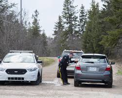Police Id Business Used To Make Decals For Nova Scotia Mass Shooter S Replica Rcmp Car The Star