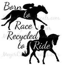 Ottb Off Track Thoroughbred Tb Dressage Horse Decal Sticker You Choose Color Ebay
