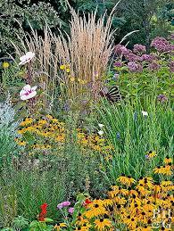 drought tolerant garden plan better