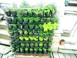 rooftop garden ideas beritatren