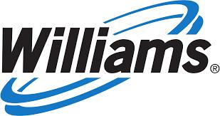 williams wall furnace vent shield