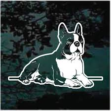 Boston Terrier Down Car Decals Window Stickers Decal Junky