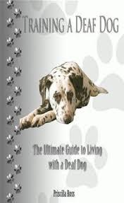 Training a Deaf Dog ebook by Priscilla Ross | Deaf dog, Deaf dog training,  Dogs
