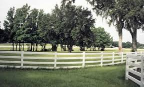 Standard Rail 4 Rail Horse Fence Avinylfence Com