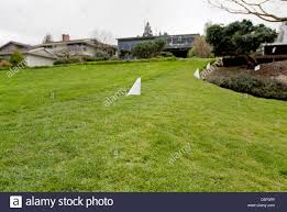 Flags Marking Pet Invisible Fence Stock Photo Alamy