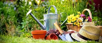 greenmylife home anyone can garden