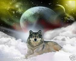 Wolf In Clouds Rv Trailer Or Wall Mural Decal Decals Graphics Sticker Art Ebay