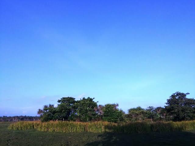 """Hasil gambar untuk perjalanan menuju kampung Kondo"""""""