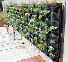 Planted Places Features A Mix Of Grasses And Succulents For This Florafelt Pocket Panel Living Wall Vertical Succulent Gardens Vertical Garden Diy Living Wall
