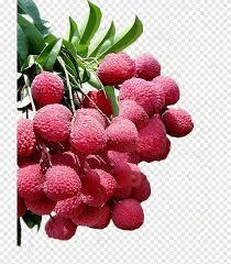 فاكهة ليتشي حلو ولذيذ ناضج Png