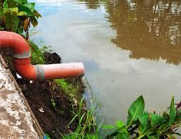 backyard greywater system