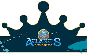 Un Cumpleanos La Mar De Divertido Atlantis Aquarium