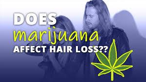 can smoking weed cause hair loss
