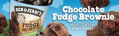 ben jerry s chocolate fudge brownie