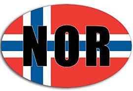 Amazon Com American Vinyl Oval Nor Norway Flag Sticker Norwegian Car Decal Automotive