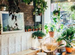 conscious guide to greenpoint brooklyn