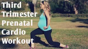 third trimester prenatal cardio workout