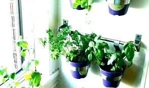 plant containers window boxes planters