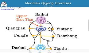 Meridian Qigong Exercises para Android - APK Baixar