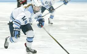 SPARTAN ROUNDUP: SHS hockey teams are 1-1 at holiday tournaments ...