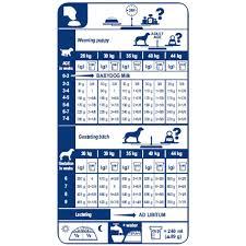 royal canin maxi starter dry dog food