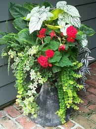 8 stunning container gardening ideas