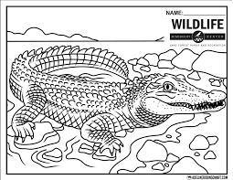 FREE coloring page for the amazing... - Adeline Robinson Art ...