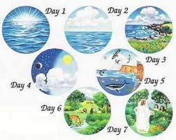 7 Days...see the visual | Bible creation story, Creation story, Creation  bible