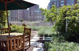 start a rooftop container garden