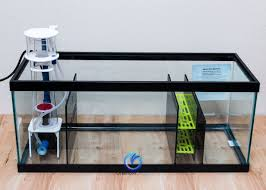 build a professional diy sump refugium