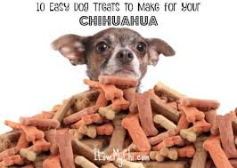 dog treats to make for your chihuahua