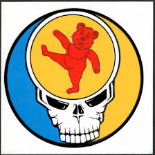 Grateful Dead Car Window Tour Sticker Decal Orange Bear And Steal Your Face Skull